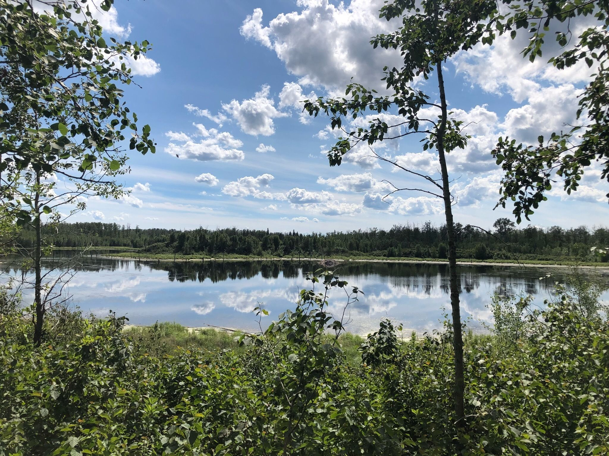 5 Day Hikes From Edmonton (0)