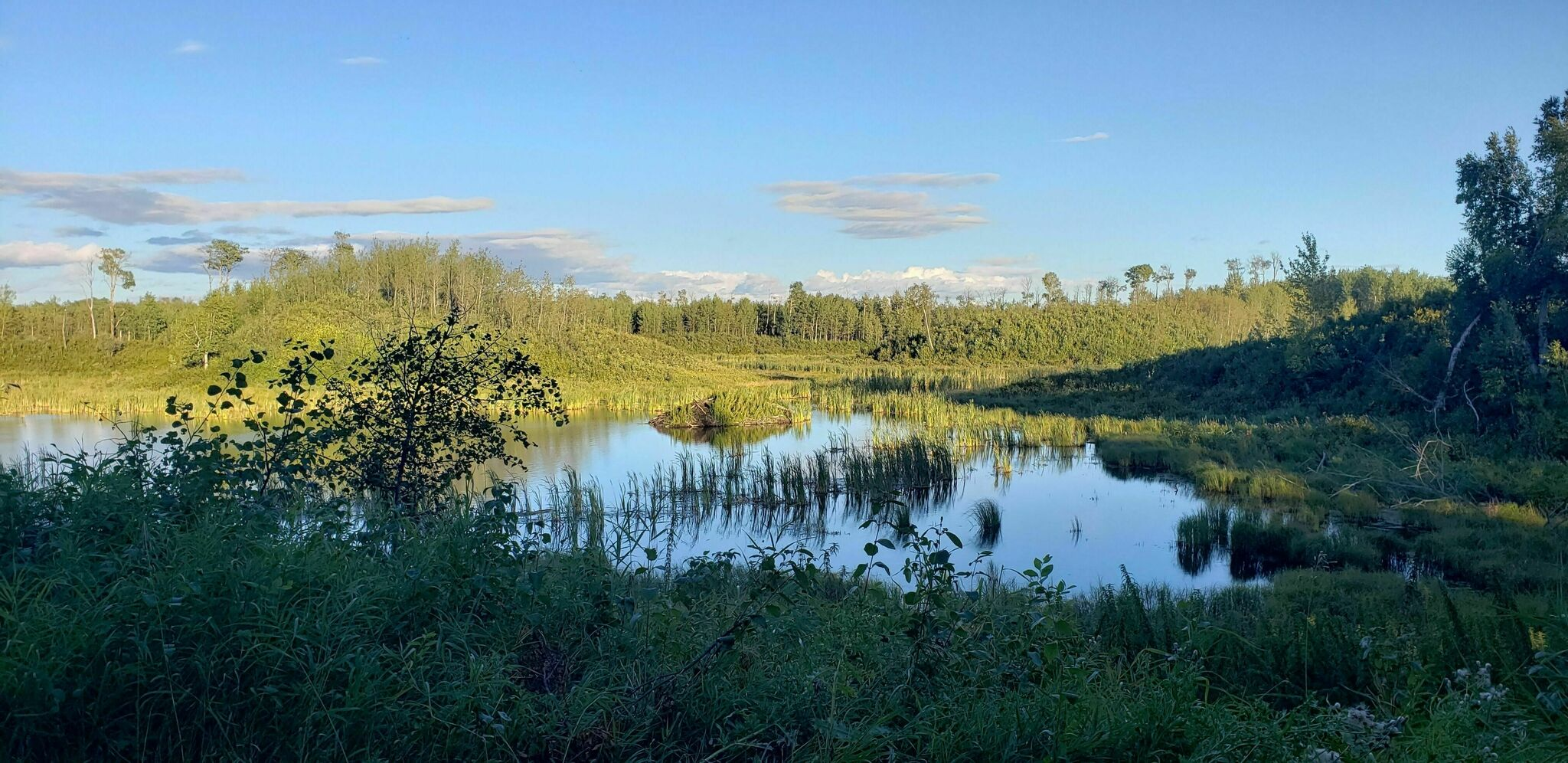 5 Day Hikes From Edmonton (2)